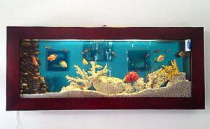 bể cá treo tường giá rẻ