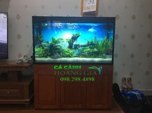 bể cá thủy sinh tại Thanh Xuân