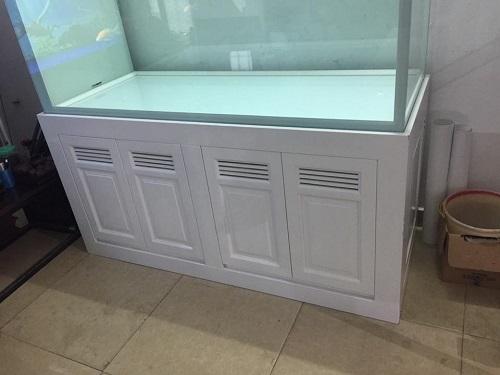 Thiết kế bể cá rồng nhà anh Huy