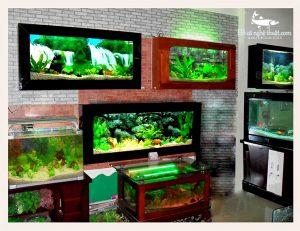 Bể cá treo tường được thiết kế bởi Bể cá Hoàng Gia đa dạng về mẫu mã và kiểu dáng
