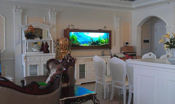 Bể cá treo tường được đặt đúng vị trí sẽ giúp tài lộc vào nhà