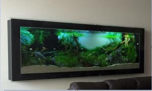 Bể cá treo tường mặt kính bóng bẩy sang trọng