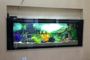 Bể treo tường trang trí cây giả rực rỡ sắc màu