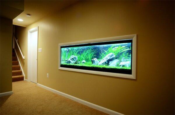 Bể cá treo tường tựa như một bức tranh thiên nhiên sống động