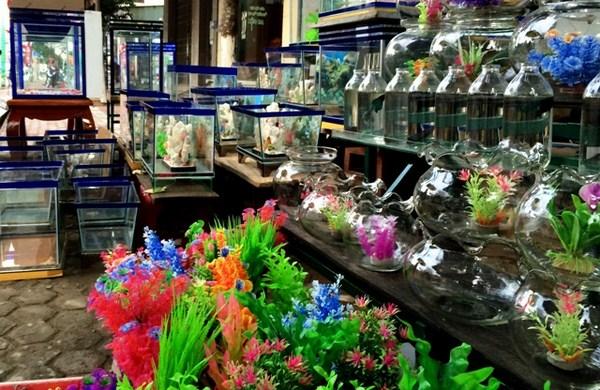 bán phụ kiện trang trí bể cá