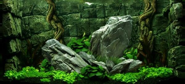 Tranh 3D bể cá cảnh Hà Nội