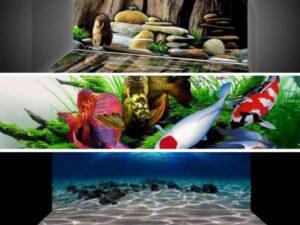 Tranh 3D bể cá cảnh tại Hà Nội