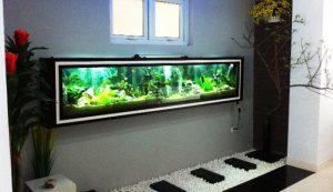 Bể cá tông đen trắng