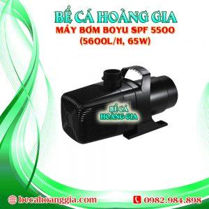 Máy bơm Boyu SPF 5500 (5600l/h, 65w)