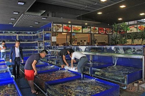 Bể chứa cho nhà hàng hải sản