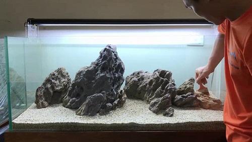 bể cá phong cách iwagumi