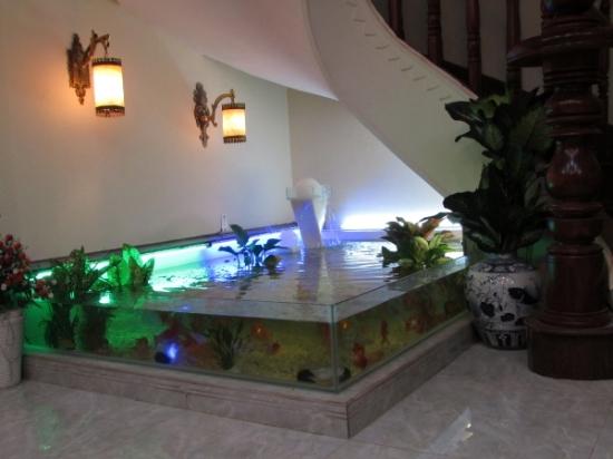 bể cá dưới chân cầu thang
