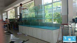 bể hải sản 3
