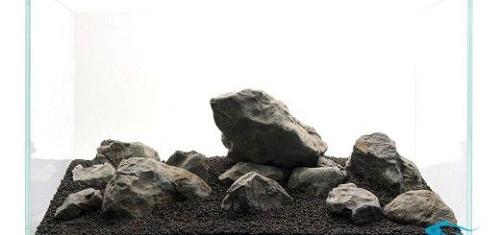 núi đá phong cách iwagumi