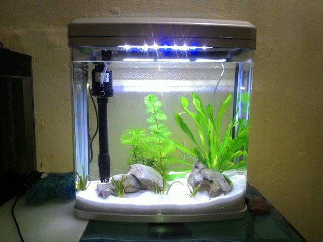 bể cá đúc tại hà nội 4
