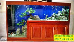 mẫu bể cá bằng gỗ đẹp