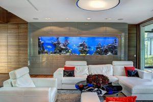 bể cá trong phòng khách