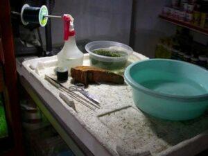 dụng cụ trồng rêu