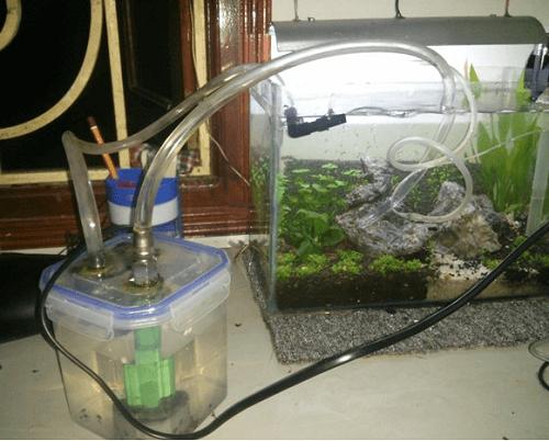 cách làm bộ lọc nước hồ cá đơn giản