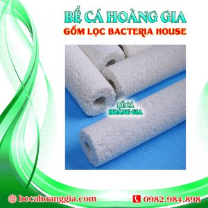 Gốm Lọc Bacteria house
