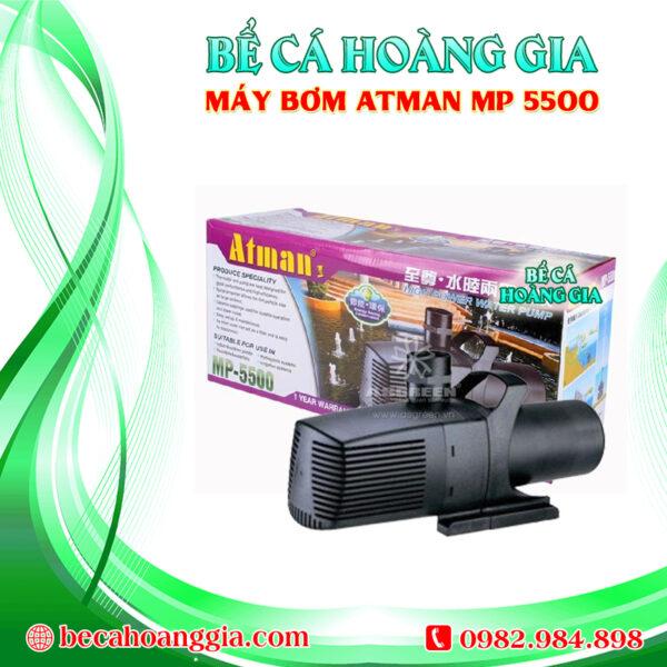 Máy bơm Atman MP 5500