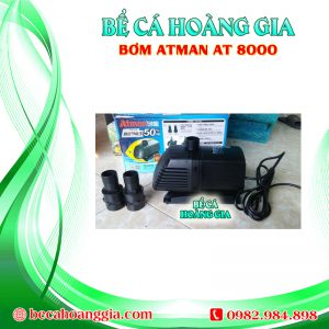 Bơm Atman AT8000