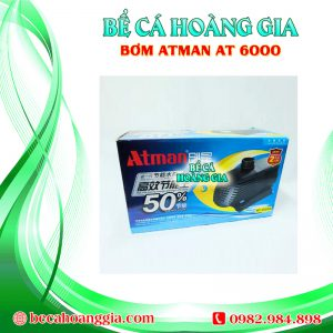 Bơm Atman AT6000