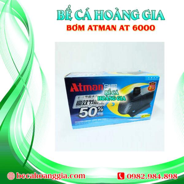 Bơm Atman AT6000