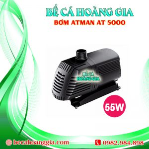 Bơm Atman AT5000