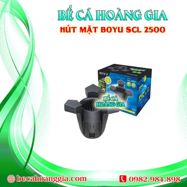 Hút mặt BOYU SCL 2500
