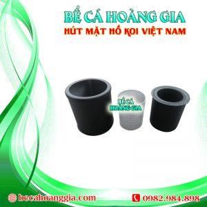 Hút mặt Hồ Koi Việt nam