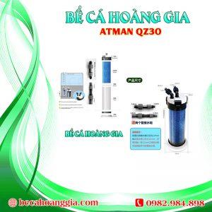 ATMAN QZ30