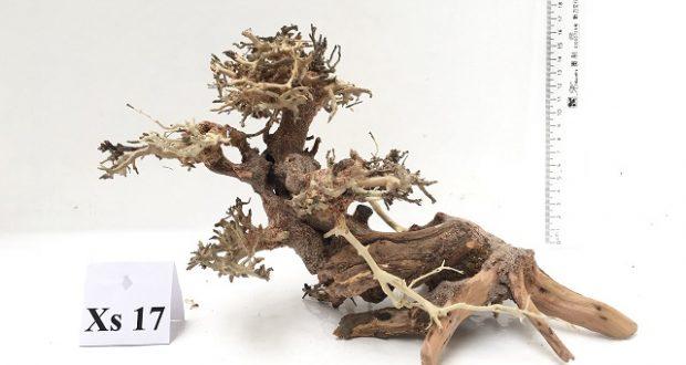 giá gỗ lũa