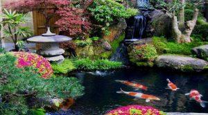 sân vườn kiểu nhật