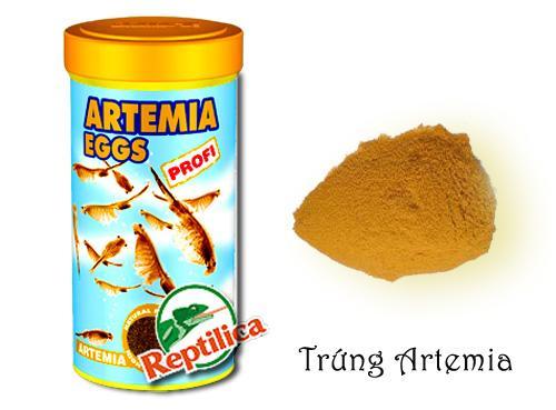 bột artemia
