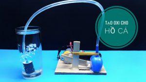 máy sục khí bể cá