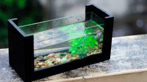 bể cá mini để bàn