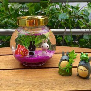 bê cá mini để bàn