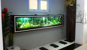 mẫu bể cá treo tường