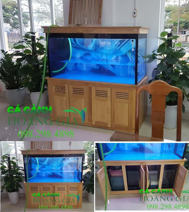 Bể cá rồng nhà anh Tú ở Bắc Giang