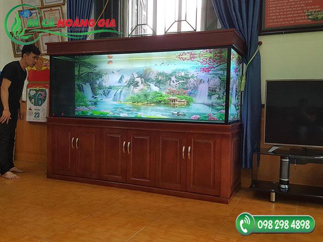 Bể cá rồng nhà anh Hoàn ở Bắc Từ Liêm, Hà Nội