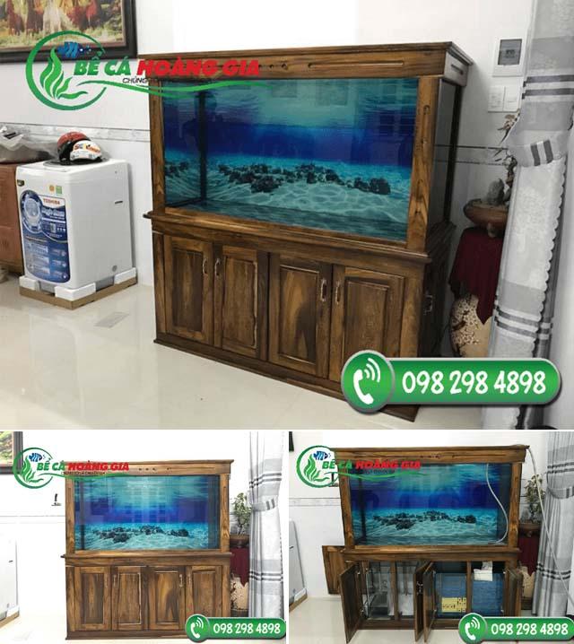 Bể cá rồng nhà anh Hiệp ở Hoàn Kiếm, Hà Nội